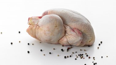 Poulet blanc PAC VF 1,4 kg - 0163506 - PassionFroid - Grossiste alimentaire