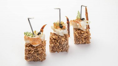 Risotto-Langouste - 2226 - PassionFroid - Grossiste alimentaire