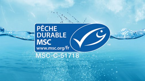 Pêche durable MSC