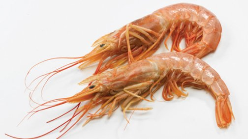 Crevettes sauvages entieres crues 10/20 - 0004578 - PassionFroid - Grossiste alimentaire