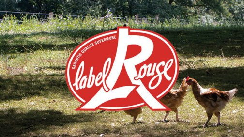 L'élevage fermier Label Rouge : gage de qualité et de production responsable - PassionFroid - Grossiste alimentaire